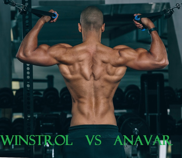 Winstrol-Vs-Anavar-article