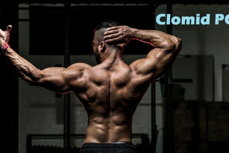 clomid-pct